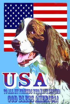 A Springer Spaniel USA Flag Tee shirt by SonnyBuds on Etsy