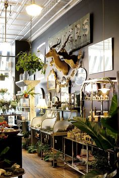 Eclecticism on display at asrai garden in chicago flower shop design, design shop, display Design Shop, Flower Shop Design, Shop Interior Design, Display Design, Retail Design, Design Interiors, Display Ideas, Display Wall, Florist Shop Interior
