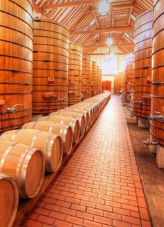 "Jordan Vineyard & Winery  --Such a pretty barrel room! www.LiquorList.com ""The Marketplace for Adults with Taste!"" @LiquorListcom   #LiquorList.com"