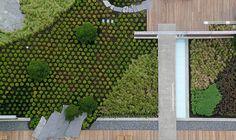 Jardim do telhado do centro mútuo de Washington