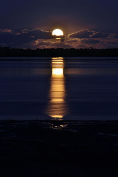 The wind has blown a warm yellow moon up over the sea; a bulbous moon, which sprouts in the soiled indigo sky, and spills bright winking petals of light on the quivering black water. Beautiful Moon, Beautiful World, Beautiful Scenery, Shoot The Moon, Moon Pictures, Moon Pics, Time Pictures, Harvest Moon, Blue Moon