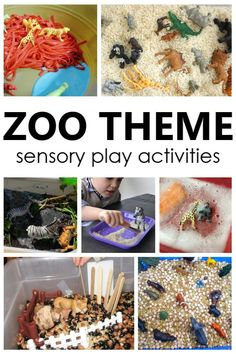 Create a fun zoo sensory bin for toddler and preschool zoo theme sensory play. Engaging way to learn about animals and a great party activity to keep the kids engaged.  #kidscrafts #sensorybin #partywithunicorns #animals #kidsparty 4 Year Old Boy Birthday, Girls Birthday Party Games, Birthday Activities, Party Activities, 1st Boy Birthday, Preschool Activities, Preschool Zoo Theme, Toddler Preschool, Sensory Bins