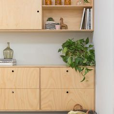 Hoop pine plywood buffet unit features notch out handle detail, in line grain and a sliding overhead door to hide a wall mounted tv. Alcove Storage, Alcove Shelving, Office Shelving, Plywood Storage, Plywood Shelves, Plywood Cabinets, Office Cupboards, Alcove Cupboards, Kitchen Wall Units