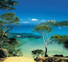Les îles de Port-Cros et Porquerolles: Porquerolles- one of the three Isles of Gold a few miles off the French Riviera. Car-free, beautiful beaches, hiking and snorkeling