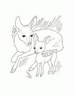 Раскраски Лесные животные раскраска для детей, олени, животные, олененок