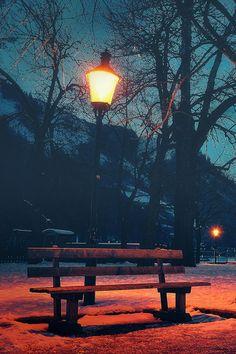 Park bench in Narnia? (;