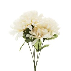 Shop for Wilko Cream Bunch of Artificial Flowers at wilko - where we offer a range of home and leisure goods at great prices.