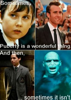 """Puberty Hold on a second. Voldemort didn't want to , nor was he proud of looking like his """"filthy muggle father"""". Voldemort didn't look creepy after puberty, but after he used magic to change his face. Get it right people! Harry Potter Humor, Harry Potter World, Mundo Harry Potter, Neville Harry Potter, Harry Potter Funny Facts, Harry Potter Riddles, Harry Potter Voldemort, Always Harry Potter, Harry Potter Characters"""