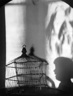 Title: Birdcage and Shadows Date:1921 Artist Imogen Cunningham  This image is about a child going to play with a bird, but instead there is no bird and it's just shadows. This image shows a story within itself. I think this because of the way the picture was taken with the shadows. She uses objects and shadows in her piece. She even set up the child's expression to give it a story.