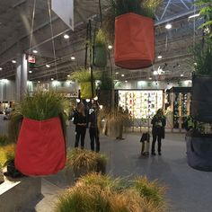 Hanging planters or booby traps? #MO2016 Spotted at @maisonobjet in Paris.