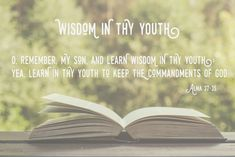 Learn wisdom in thy youth - WhipperBerry