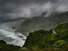 West Coast of the South Island, New Zealand