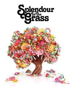 Splendour In The Grass - the greatest festival in Australia! Summer Music Festivals, Splendour In The Grass, Festival Posters, Candyland, Graphic Design, Cool Stuff, How To Make, Inspiration, Sweet Sweet
