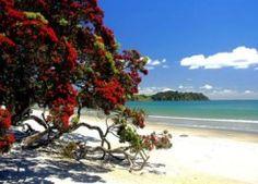 Auckland Waiheke Island ....go there.