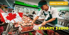 Job Vacancies at supermarket butcher canada Apply Job, How To Apply, North And South America, Education English, Find A Job, Canada, Hunting, Job Offers, Travel