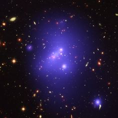 Astronomers have used data from three of NASA's Great Observatories to make the most detailed study yet of an extremely massive young galaxy cluster.
