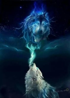 Wolf northern lights