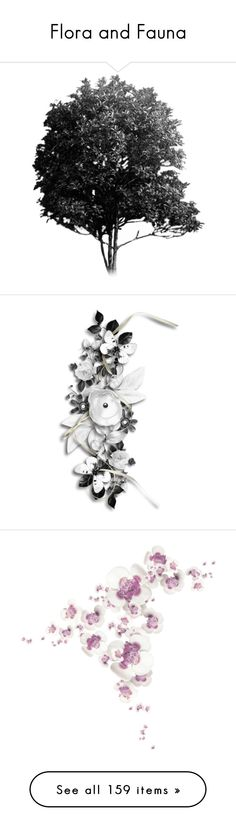 """""""Flora and Fauna"""" by jesking ❤ liked on Polyvore featuring trees, backgrounds, plants, fillers, black and white, flowers, effects, other, clusters and nature"""