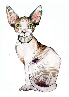 Sphynx cat illustration.