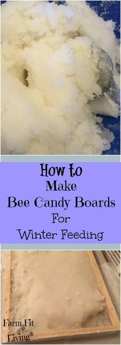 Winter Bee Feeding   Feeding Bees In Winter   Beekeeping DIY   How to Make Bee Candy Boards