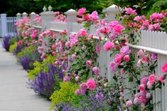 Three Decorative Garden Fence Ideas | DoItYourself.com