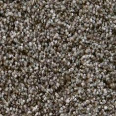 Foundry I in Creek Side Carpet Samples, Carpet Tiles, How To Dry Basil, Herbs, Flooring, Mineral, Basement, Bedroom, Root Cellar