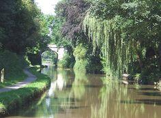 The Macclesfield Canal near Scholar Green