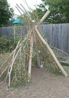 tree branch teepee