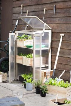 Great idea for cold frame/greenhouse Cold Frame, Rain Garden, Shade Garden, Garden Styles, Permaculture, Garden Projects, Garden Inspiration, Garden Landscaping, Outdoor Gardens