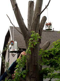 Dosen - Eulen Bird, Outdoor Decor, House, Home Decor, Homemade Home Decor, Birds, Haus, Interior Design, Home Interiors