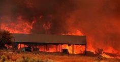 Furious Blue Cut Fire threatens thousands of homes in San ...