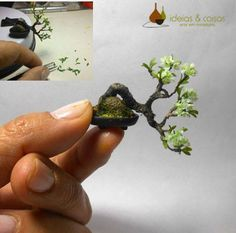 Bonsai miniature - handmade in modeling clay cold porcelain