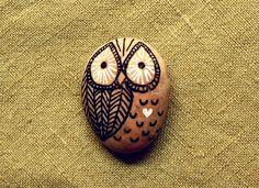 cute owl on the rock