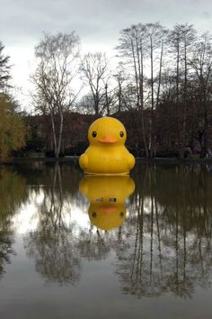 giant inflatable rubber duck florentijn hofman nuremberg germany (2)