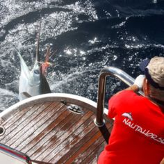 Kusler yachts wrestling a nice Marlin