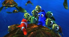 turtles | Crush, his son Squirt, and other baby turtles help out Marlin and Dory .. Finding Nemo
