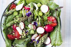 spring salad / ensalada de primavera