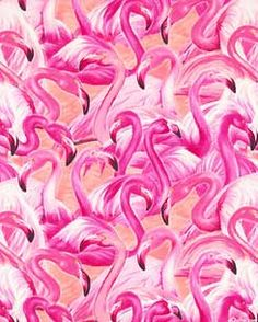 pink-pink-pink-flamingos-thumb.jpg (245×306)