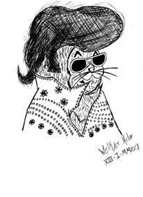 """Elvis, um gato um """"Mito"""" ~ Raick Tavares"""