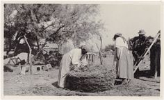 L-R: Alena Levi, unknown, unknown - Cahuilla - 1917 {Note: Levi adds Arrow-weed to the bottom of a large storage basket. Usa Culture, Riverside County, Indian Village, Large Storage Baskets, Old West, National Museum, Men Looks, Weed, That Look