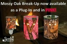 Available September 1, 2014   https://jenlopmar.scentsy.us