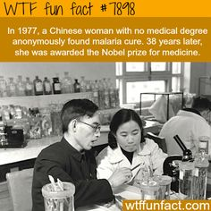 WTF Fun Facts is updated daily with interesting & funny random facts. We post about health, celebs/people, places, animals, history information and much more. New facts all day - every day! True Facts, Funny Facts, Random Facts, Fail Blog, Gi Joe, What The Fact, Interesting History, Interesting Facts, Humanity Restored