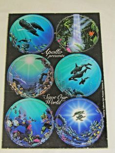 SAVE OUR WORLD POGS by artist APOLLO, Vintage, Limited Edition Signed by Artist #Apollo Hawaiian Art, Our World, Beautiful Islands, Apollo, Miniatures, Vibrant, Artist, Artwork, Vintage
