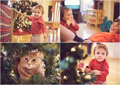 Family storybook session at Christmas time