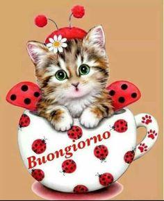 Diamond Painting Ladybird Cup Cat Paint with Diamonds Art Crystal Craft Decor Teacup Kitten, Animals And Pets, Cute Animals, Mosaic Kits, Ricky Martin, Wallpaper Iphone Disney, Cute Cats And Kittens, Halloween Cat, Christmas Cats