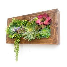 Original design artificial flowers succulents vertical garden floral art creative wooden wall hangings(China (Mainland))