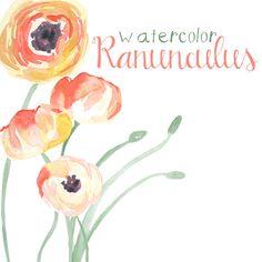 Watercolor Ranunculus Flower Clip Art for Scrapbooking Instant Download Digital Flowers Digital Clipart Commercial Use