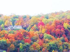 Upstate NY Fall
