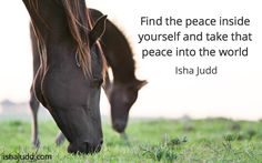 Find the peace inside yourself and take that peace into the world. Isha Judd. Quotes