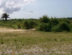 LAND FOR SALE IN AKINS MARSHY HILL ESTATE ADO ROAD, AJAH, LEKKI, LAGOS  Click on the image to view full details  #realestate #property #land #forsale #Lekki #Lagos #Nigeria